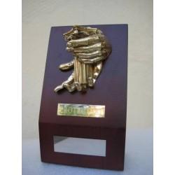 Trofeo Protectuti